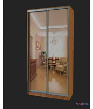 Шкаф-купе с 2 зеркальными дверьми